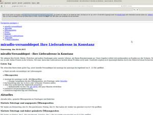 gespiegelte Seite im Google-Cache