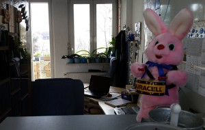 Zu Ostern trommelt zuweilen der Duracell-Hase im miradlo-Versanddepot in Konstanz