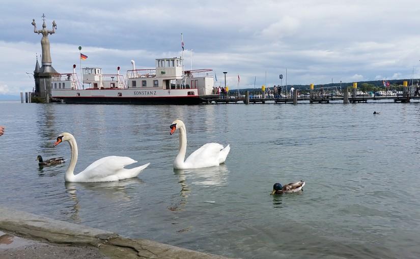 5,11 Meter Pegelstand in Konstanz – Hochwasser am Bodensee