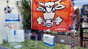 Schaufensterdeko mit Toren und grün im miradlo-Versanddepot in Konstanz zur Fußball-EM unter anderem mit Hopp-Schwiiz-Fahne