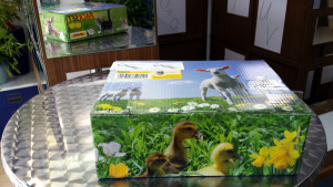 Pakete versenden im miradlo Versanddepot, Lieferadresse Konstanz, Foto: Packset, Päckle, Päckli