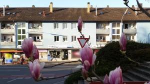 von gegenüber betrachtet, miradlo-Versanddepot, die Lieferadresse Konstanz, Frühling