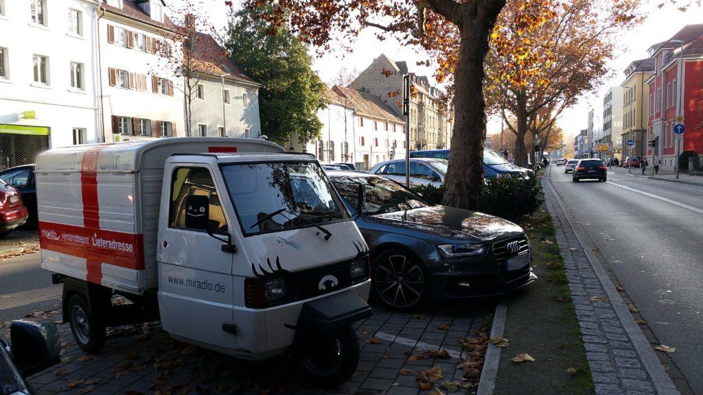 Apelina im Herbst auf der Laube in Konstanz - miradlo-Versanddepot