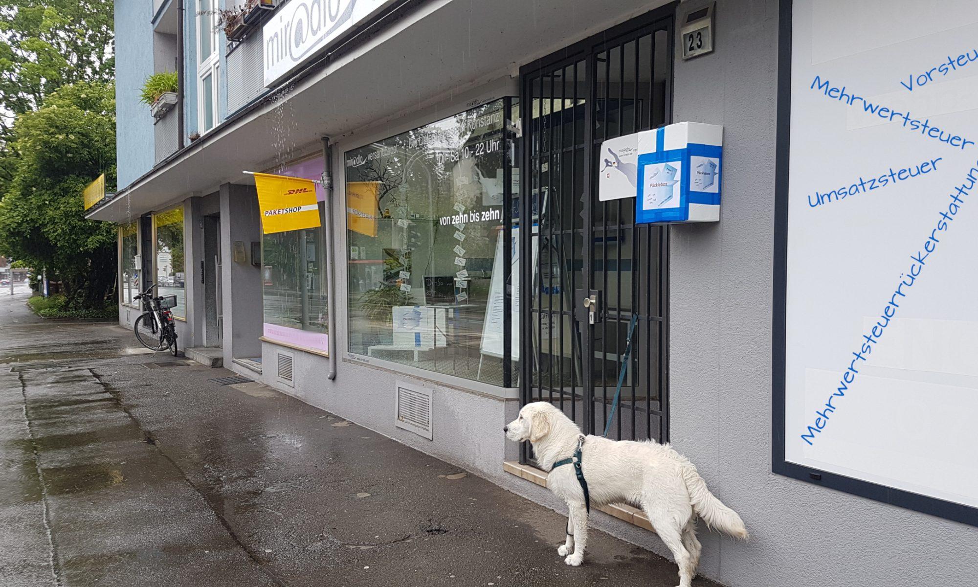Mehrwertsteuerrückerstattung, Umsatzsteuer, Vorsteuer, Mwst - trockenes Thema mit Regenfoto und nassem Hund visualisiert - miradlo Versanddepot Lieferadresse Konstanz